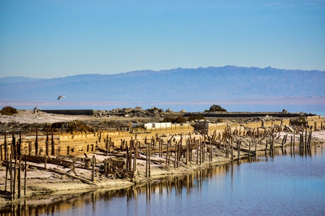 This Salton Sea taken in April 2017