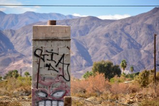 The ruins of Salton Sea. Find beauty where ever you are