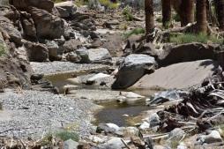 Like this little creek.